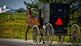 Deputies in Ohio pulled over an Amish buggy that was equipped with a radio sound system and a 12-pack of beer.