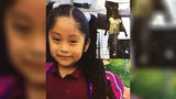 Amber Alert issued for 5-year-old girl taken from playground
