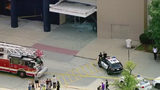 Subject in custody after SUV drives into mall near Chicago