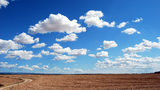 NASA and the GLOBE program are calling on citizen scientists to participate in the Fall Cloud Challenge by taking photos of clouds on their cellphones and sending them to GLOBE. Researchers want to compare the pictures to those taken in the spring.