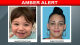 The Florida Department of Law Enforcement on Wednesday issued an Amber Alert out of Orange County for 2-year-old Jenzell Cintron Perez, a news release said.