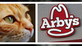 Tanner Maggard, 19, of Lee's Summit, Missouri, is accused of going to the Arby's where he used to work Saturday, Oct. 19, 2019, and mutilating and decapitating a cat in the men's restroom. Maggard has been charged with felony animal abuse.