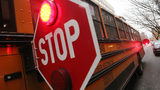 Authorities are investigating after a child was hit by a bus in Whitefish, Montana, on Tuesday, Nov. 12, 2019.
