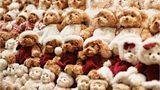 Hershey Bears hockey team break record at annual Teddy Bear Toss