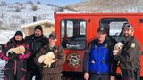 Members of the Weber County Search and Rescue hold the three Great Pyrenees puppies rescued Sunday in Utah.