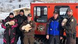 SEE: Three abandoned puppies rescued from Utah mountaintop
